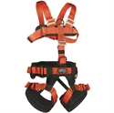 Picture of NFPA Full Body Harness